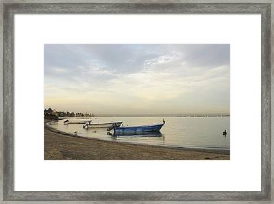 La Paz Waterfront Framed Print by Anne Mott