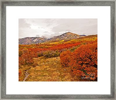 La Sal Autumn Framed Print by Bob and Nancy Kendrick
