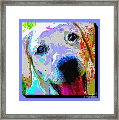 Lab Love Framed Print by Alene Sirott-Cope