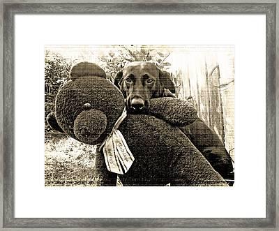 Labrador And Holiday Teddy Framed Print