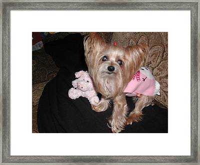 Lacey And Miss Piggy Framed Print by Nancy Taylor