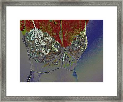 Lacy - 1 Framed Print