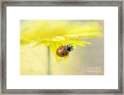 Lady In Yellow Framed Print by Jacky Parker