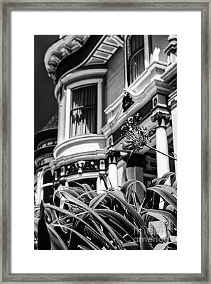 Lady With A Flower Ll - Black And White Framed Print by Hideaki Sakurai