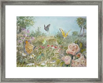 Ladybug Framed Print by Dorothy Herron