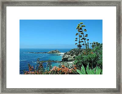Framed Print featuring the photograph Laguna Beach by Renee Hardison