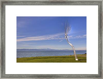 Lake Constace Friedrichshafen Framed Print by Joana Kruse