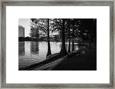 Framed Print featuring the photograph Lake Eola Water Edge by Lynn Palmer