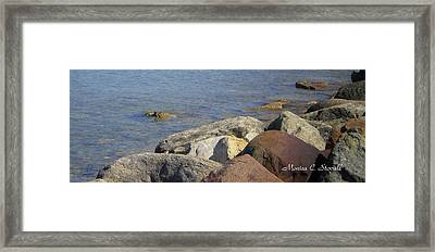 Landscapes L215 Framed Print by Monica C Stovall