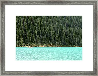 Lake Louise And Trees Framed Print by Amy Herbison