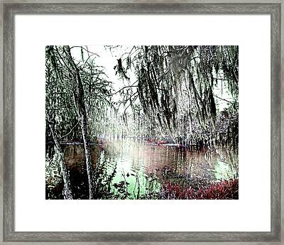 Framed Print featuring the photograph Lake Martin Swamp by Lizi Beard-Ward