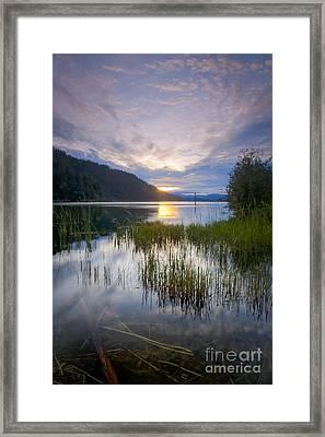 Lake Reeds Framed Print by Idaho Scenic Images Linda Lantzy