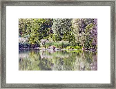 Lake Reflections Framed Print by Odon Czintos
