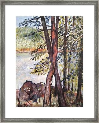 Lake Sebago Framed Print by Victor SOTO