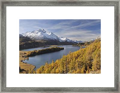 Lake Sils With Trees In Autumn, Piz Da La Margna, St Moritz, Maloja District, Engadin, Graubunden, Switzerland Framed Print by Martin Ruegner