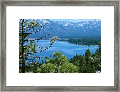 Lake Tahoe Framed Print