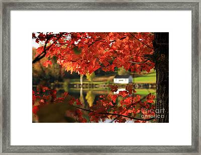 Lake Tarleton New Hampshire Framed Print by Butch Lombardi