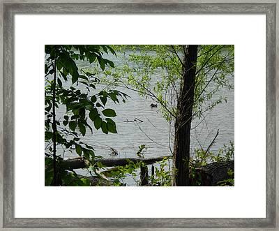 Lake View Framed Print by Craig Keller