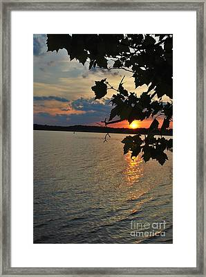 Lakeset Leaves Framed Print by TSC Photography Timothy Cuffe Jr