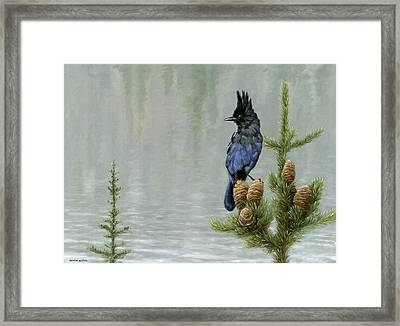 Lakeside Bandit Framed Print