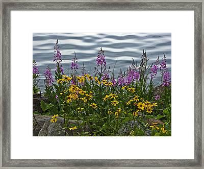 Lakeside Beauties Framed Print