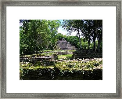 Lamanai- Belize Framed Print by Li Newton