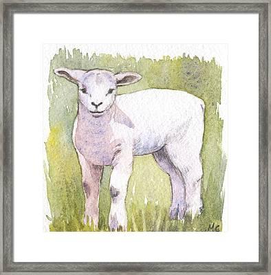 Lamb Framed Print by Maureen Carter