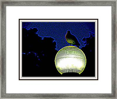 Lamp And The Bird Framed Print by Anand Swaroop Manchiraju