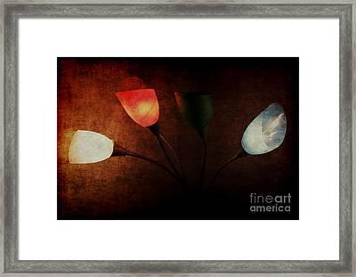 Lamp Framed Print by Billie-Jo Miller