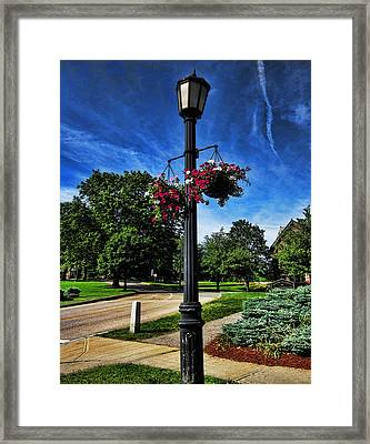 Lamp Post In The Park Framed Print by Lourry Legarde