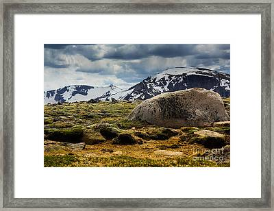 Framed Print featuring the photograph Land Above The Trees by Everett Houser