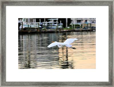 Land In Sight Framed Print by Barry R Jones Jr