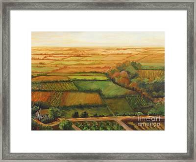 Land Lots Of Land Framed Print