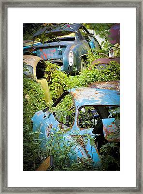 Land Of The Lost Framed Print