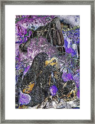 Land Of The Lost Framed Print by Devalyn Marshall