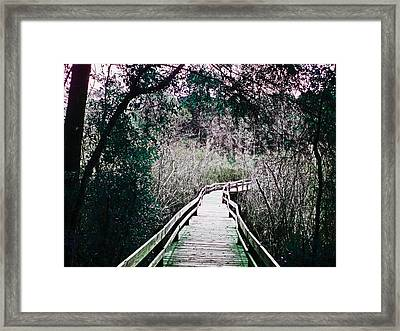 Landmark Boardwalk Framed Print by Brandy Nicole Neal