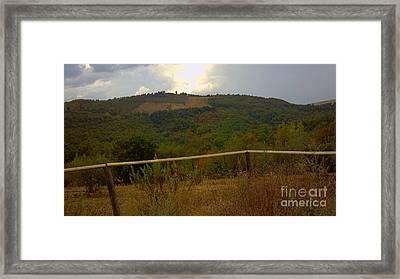 Landscape Greve In Chianti Framed Print by Nettie Pena