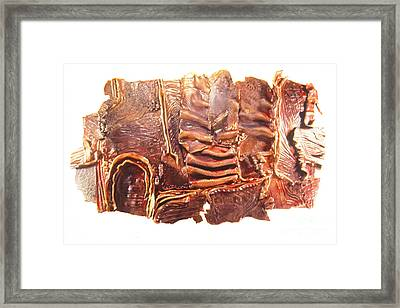 Landscape Framed Print by Judith Birtman