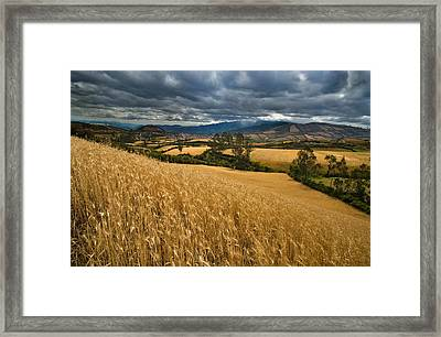 Landscape Of Southern Colombia. Cornfields Near The Village Of Guaitaria. Framed Print by Eric Bauer