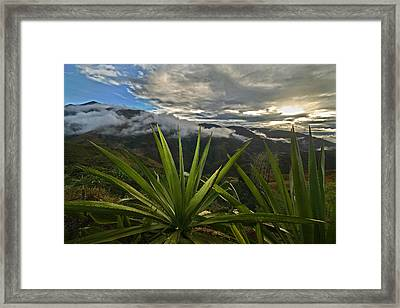 Landscape Of Southern Colombia. Department Of Narino. Framed Print by Eric Bauer