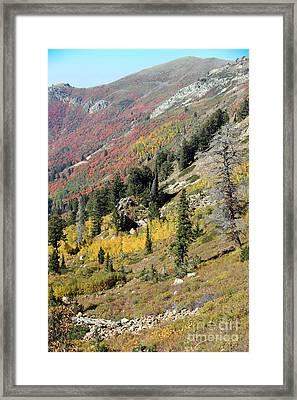 Landslide  Framed Print