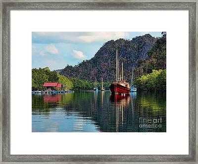 Langkawi Mangroves Framed Print by Graham Taylor