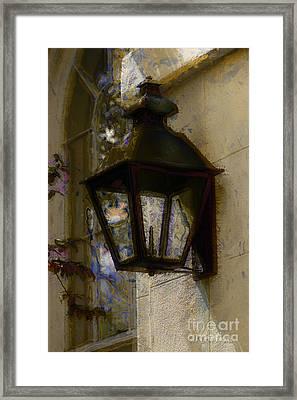 Lantern 11 Framed Print by Donna Bentley