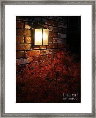 Lantern Light Maple Framed Print by Linda Battles