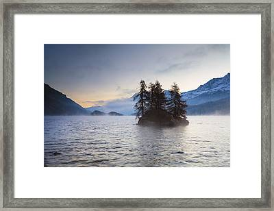 Larch Trees On Island In Lake Sils, Engadin, Switzerland Framed Print by F. Lukasseck