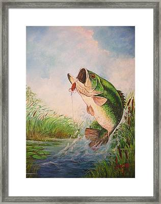 Largemouth Bass Framed Print by Jose Lugo