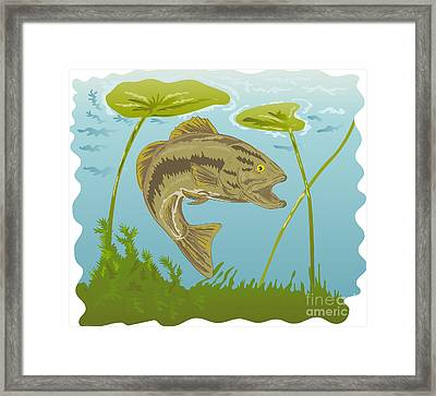 Largemouth Bass Jumping Framed Print by Aloysius Patrimonio