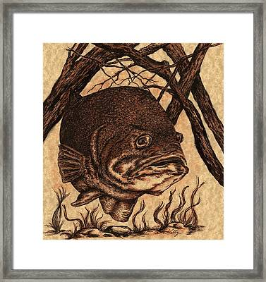 Largemouth Bass Framed Print by Kathleen Kelly Thompson