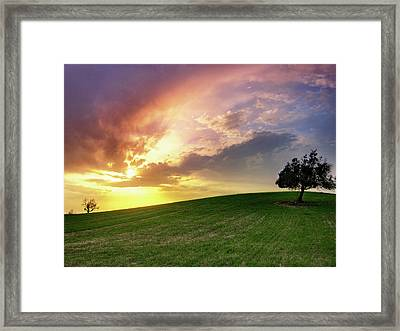 Larnaca Countryside Framed Print by Constantinos Hinis