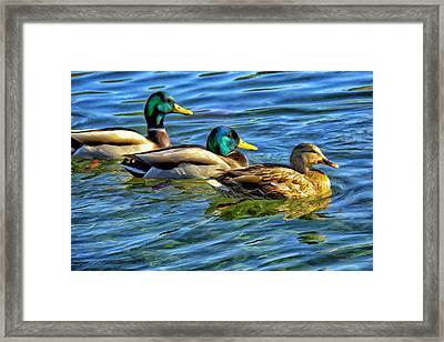 Larry Moe And Shirley Framed Print by Dominic Piperata